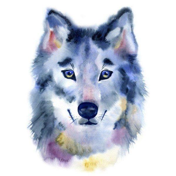 Tatuajes de lobos para mujer lobezno ternura