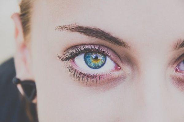 las-cejas-de-la-corona-iris-azul