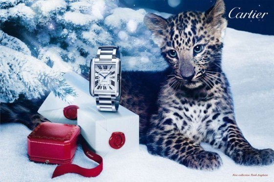 cartier_holiday_2012_campaign_5