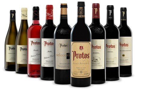 BODEGON_alta_PROTOS_2010