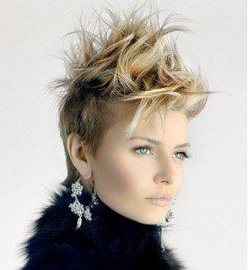 short-hair-2012