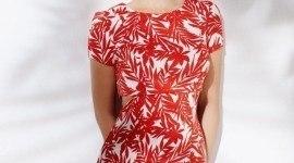 Catálogo Blanco: Vestidos de moda primavera-verano 2015