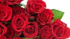 ¿Cuáles son las flores preferidas para un ramo el día de San Valentín 2015?
