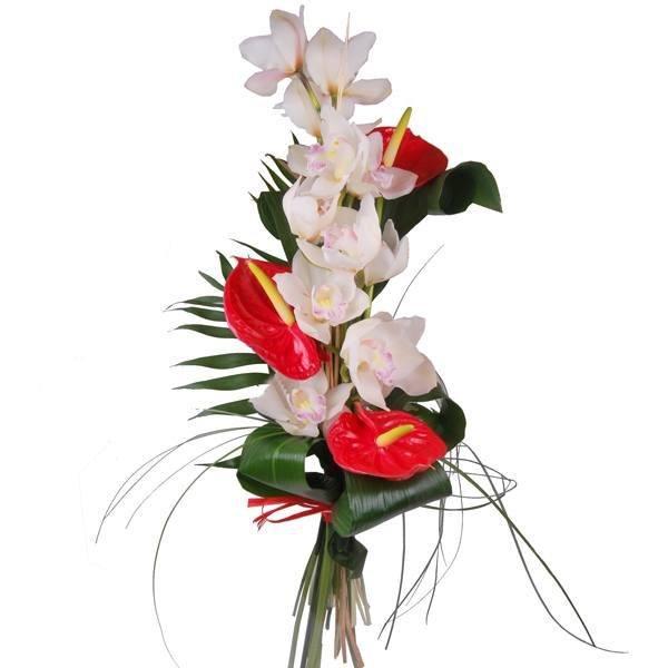 cuales-son-las-flores-preferidas-para-un-ramo-el-dia-de-san-valentin-2015-orquideas