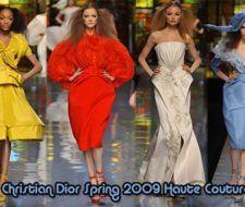 Nueva Colección Christian Dior Primavera 2009 Alta Costura