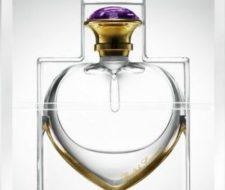 Love, la fragancia premium de Ralph Lauren